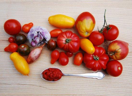 Tomaten_Ketchup_Rezept